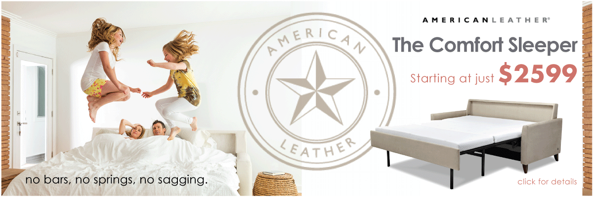 Permalink to: American Leather Comfort Sleepers