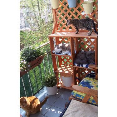 cat barrier small patio