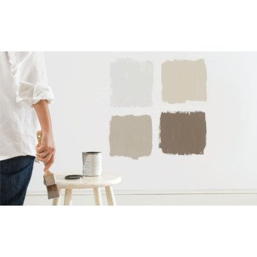 Front Paint Swatches