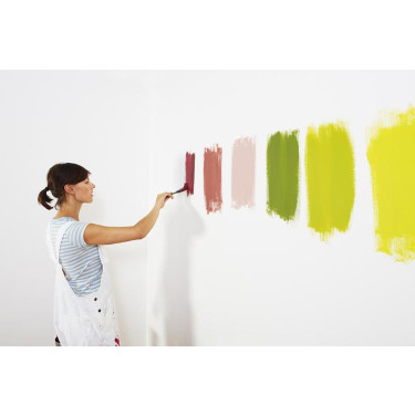 Sample Paint Colors on the Wall